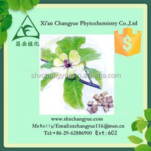 Gold Supplier Twolobed Officinal Magnolia Bark Extract