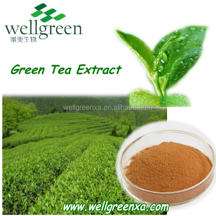 natural tea polyphenols from GMP ISO HACCP certified manufacture