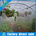 High-tech Hydroponic Greenhouse Water Fogging System