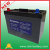 Lead Acid Battery 12V100ah Deep Cycle Maintenance Free Battery with Gel or Lead Acid CE RoHS UL Approved