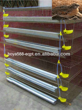 Big capacity Full Equipped Galvanized Quail H-type Cage