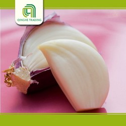 Professional supplier fresh garlic with high quality
