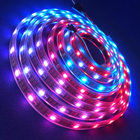 DC12v input 5m 60 pixel/m ws2812b ws2811 rgb led strip;addressable ws2811 built-in smd 5050 chip;digital strip