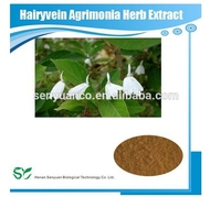 GMP standard Hairyvein Agrimonia Herb Extract,Best price Gotu Kola Extract powder