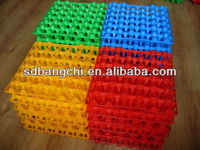 Plastic egg tray - 36 cell for chicken farm