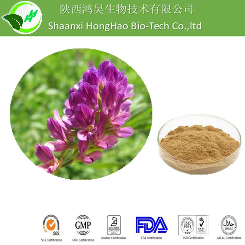 Alfalfa extract powder/alfalfa seed/alfalfa hay for sale