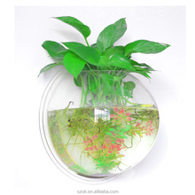ecofriendly decorative wall mounted clear acrylic aquarium