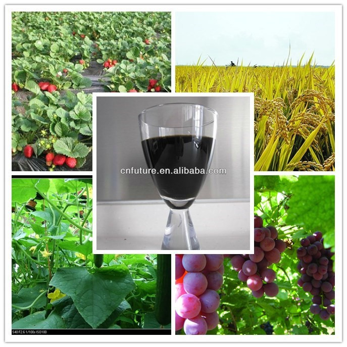 liquid bio fertilizer foliar fertilizer humic acid fulvic acid