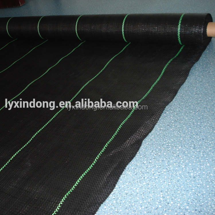 PP Fabric/Ground Cover/Landscape/Manufacturer