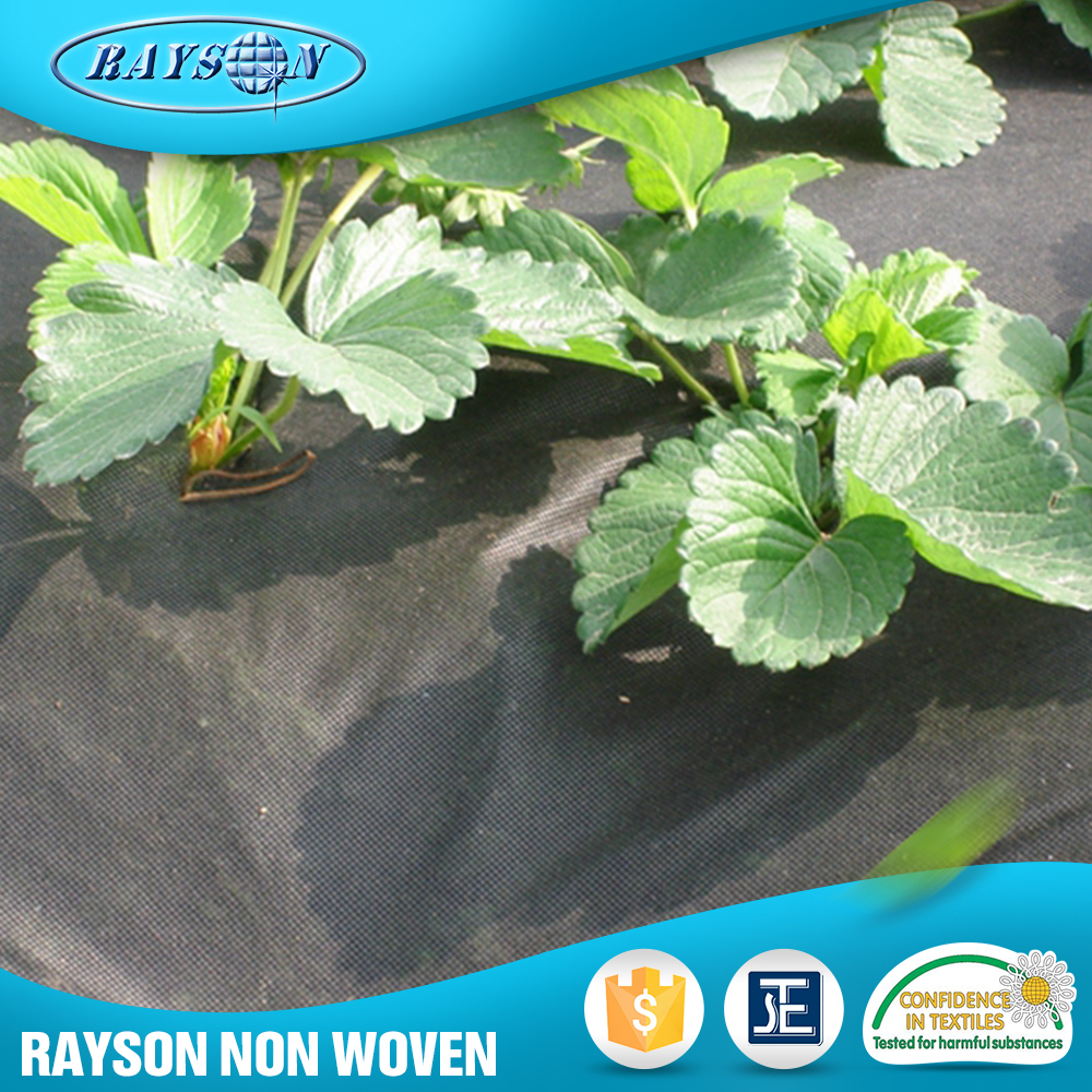 China Supplier Mulching Flower Wrapping Material Agriculture Black Plastic Film