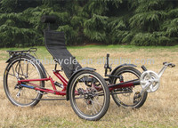 20 inch tricycle bike three wheels bicycle for elderly