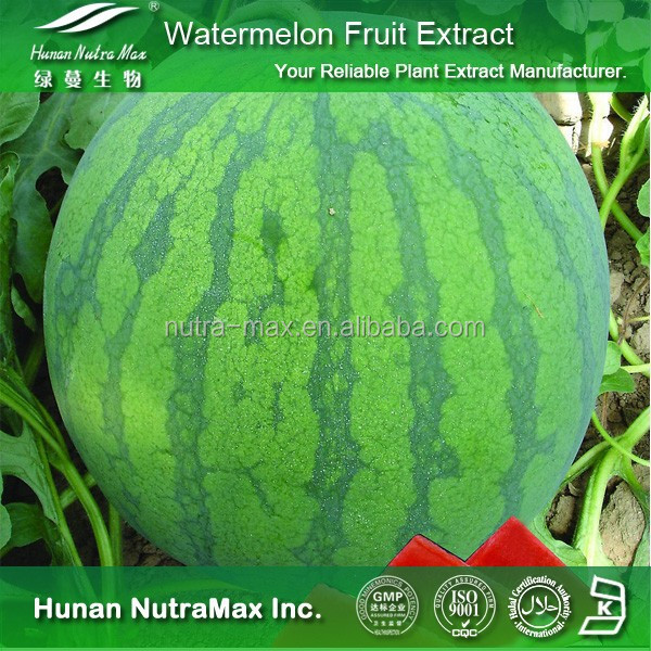 Watermelon Fruit Extract, Watermelon Fruit Extract Powder, Natural Watermelon Fruit Extract