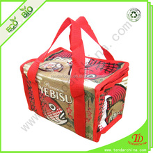 Aluminum Cooler Bag Thermal Bag, Aluminium Foil Cooler Bag