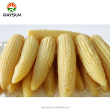Canned food vegetable canned baby corn