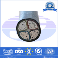 4 Core Aluminium Power Cable Low Voltage Al Conductor Power Cable with XLPE/PVC Insulation