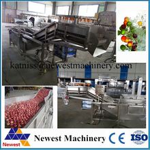 factory sale industrial fruits washer/leaf vegetable cleaning machine/bubble vegetable washing machine