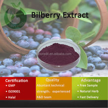 Experienced Export Fruit P.E Bilberry Extract