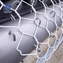 electrical galvanized zoo fence hexagonal wire mesh