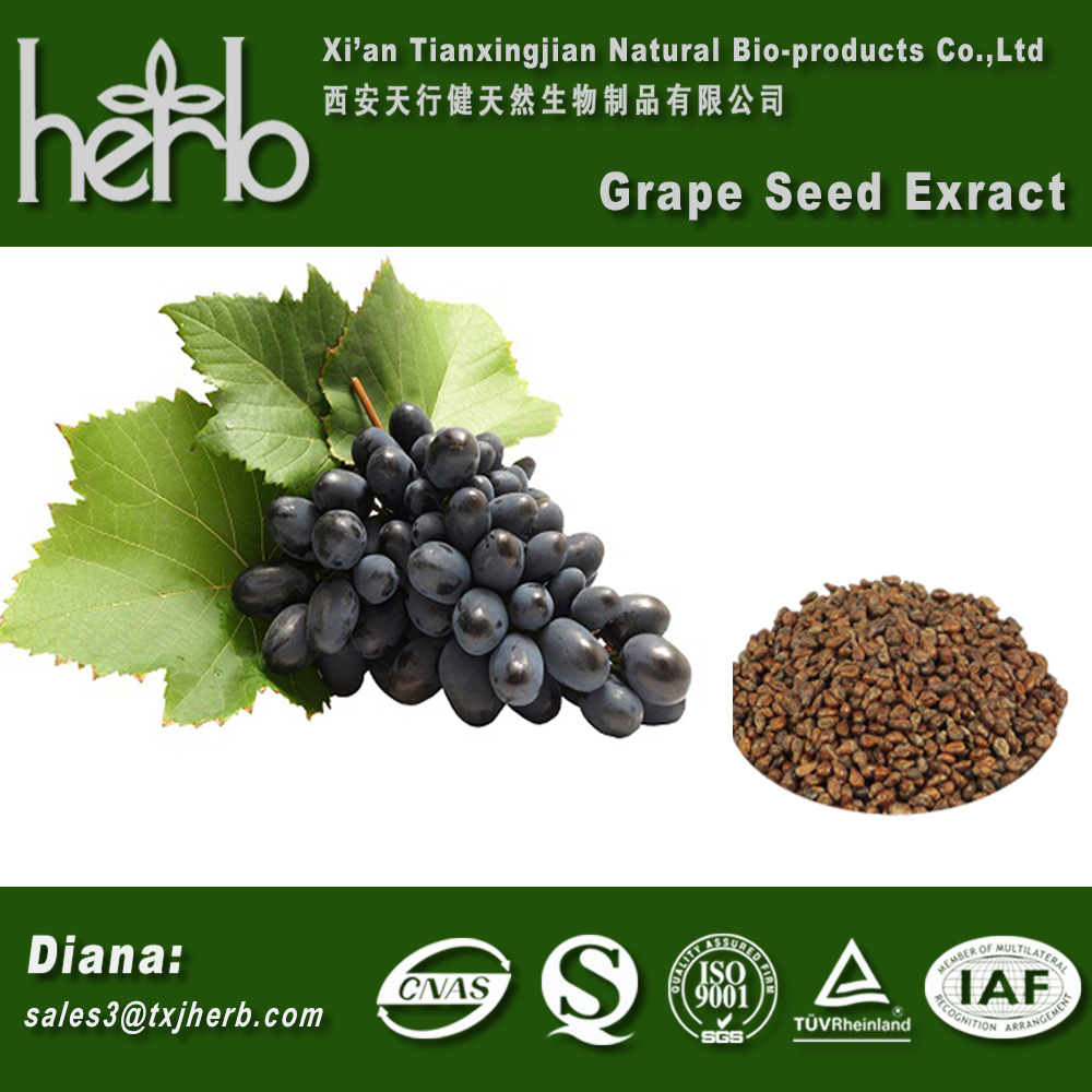 Antioxidant Grape seed extract with Proanthocyanidins 95% UV Polyphenols 80% 85% 90% 95% UV