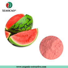 Original Taste And Flavour Organic Freeze Dried Watermelon Seed Extract Powder