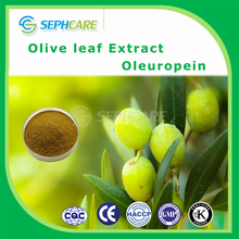 High quality olive leaf extract water soluble oleuropein 20%