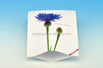 empty colorful seed packet/ paper plastic seed packet