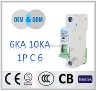TYPES OF ELECTRICAL 6 AMP CIRCUIT BREAKER