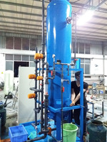 cation and anion resin exchange 6tph water deionized DI plant