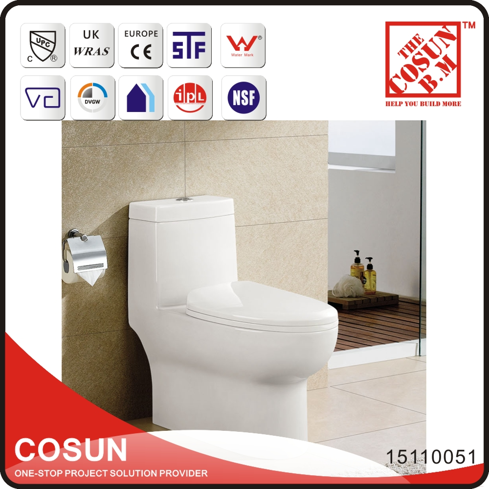 Vitreous China S-trap Siphon Flushing Water Closet