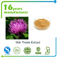 factory supply milk thistle extract