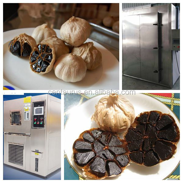 Factory price machines black garlic with high capacity and efficiency