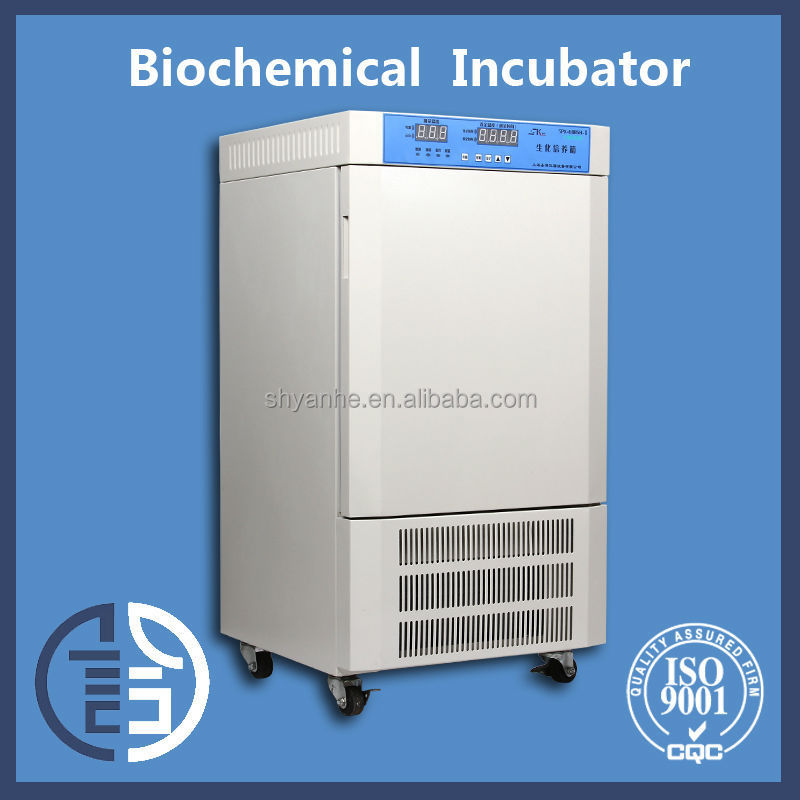 SPX-80BSH electrical thermostat laboratory incubator china incubator