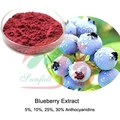 pure Blueberry extract 5%~30% proanthocyanidins