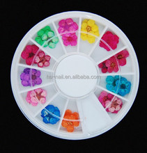 6cm wheel packing real dried flower for nail decoration