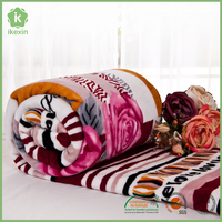 Microfiber Home Textile Product Flannel Fleece Blanket