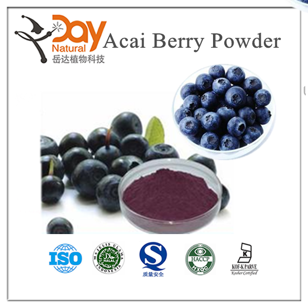 Factory Price Supply Acai Berry Juice Powder Fruit Powder