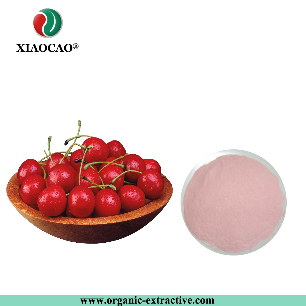 Hot Selling Wild Cherry Fruit Juice Powder/Black Cherry Powder