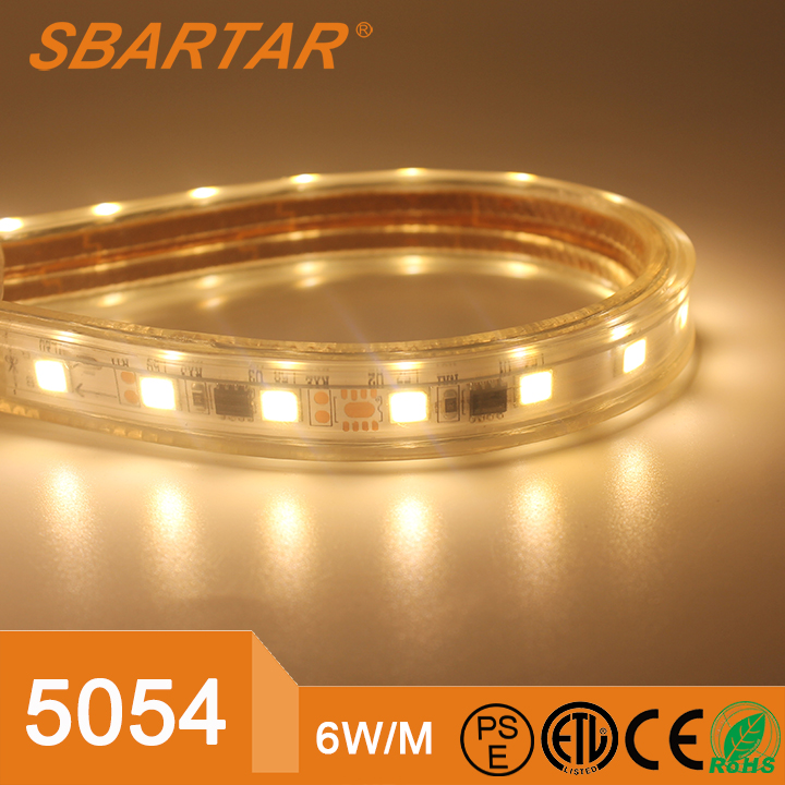 IP68 Waterproof Outdoor Use Rope Swimming Pool 5054 Led Strip Lighting