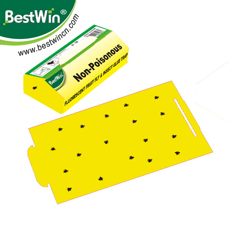 BSTW New Double sided Large Area Yellow for traps fly catcher fly trap sticky