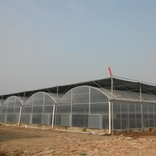 The cheapest hot sale High quality factory price intelligent multi-span tunnel plastic film greenhouse for agriculture planting