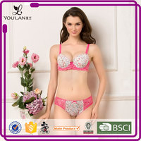 Christmas Best The Classical Elegance Mesh Young Lady Colorful Silk Bra And Panty Set