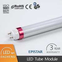 China manufacturer Red and Blue Ring T8 LED tube with IP20