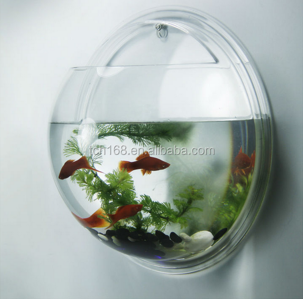 how to make fish bowl water clear