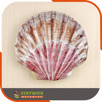 Customized Vintage China Plates Melamine Seashell Plates