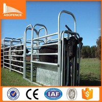 cattle forcing yard/2015 high quality cattle forcing yard/cattle forcing yard top 10 selling products