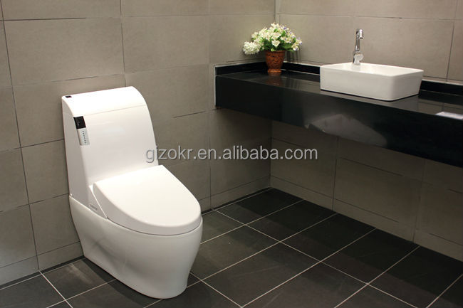 Bathroom Sanitary Hidden Camera In Toilet Wc Buy Hidden Camera In Toilet Wc