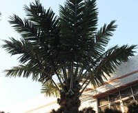 GNW APM014 imitative artificial plastic leaves palm tree for outdoor landscape decoration