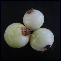 Dry Type Shallot Onion Peeling Machine Onion Peeler Machine