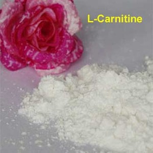 high quality L-carnitine cas 541-15-1