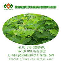 Natural Extract Powder Pueraria Isoflavones from Pueraria Mirifica Extract